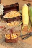 Grano amarillo del maíz y maíz secos frescos Fotos de archivo