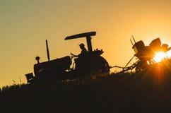 Grano che pianta, agricoltura, uomo del campo fotografia stock libera da diritti