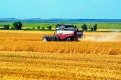 Grano che raccoglie il lavoro delle associazioni nel giacimento di grano Fotografia Stock Libera da Diritti