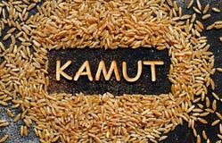 Grano crudo de Kamut con una opinión superior de Kamut de la palabra Fotos de archivo libres de regalías