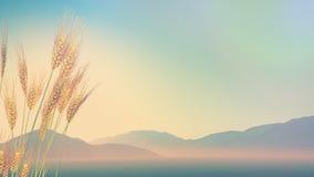 grano 3D con le colline nella distanza con retro effetto illustrazione di stock