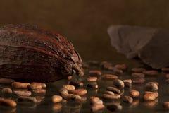 Grano de cacao con el chocolate Imagenes de archivo