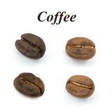 Grano de café aislado Foto de archivo