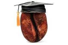 Grano de café con el casquillo de la graduación Cursos de aprendizaje de Barista 3d con referencia a ilustración del vector