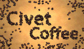 Grano de café de la civeta en el papel viejo Fotos de archivo libres de regalías
