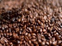 Grano de café del Arabica en mano del granjero almacen de video