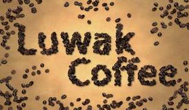 Grano de café del café de Luwak en el papel viejo Fotografía de archivo libre de regalías