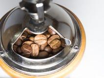Grano de café en amoladora de café Fotografía de archivo
