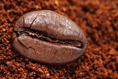 Grano de café en el café molido Imagen de archivo