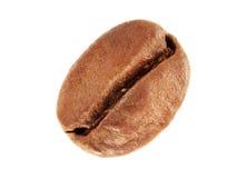 Grano de café en macro Foto de archivo libre de regalías