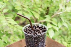 Grano de café en vidrio Foto de archivo libre de regalías