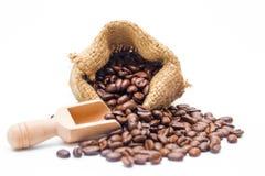 Grano de café orgánico imagen de archivo