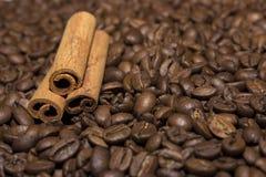 Grano de café y palillos de canela foto de archivo libre de regalías