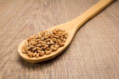 Grano de cereal del trigo Cuchara y granos sobre la tabla de madera Foto de archivo libre de regalías