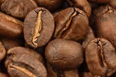 Grano de Coffe en un boakground del coffe de tierra Foto de archivo