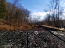Grano de la madera Fotografía de archivo