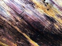 Grano de la madera con tonalidades coloridas imagen de archivo libre de regalías
