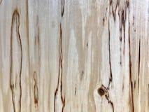Grano de madera de abedul Fotografía de archivo libre de regalías