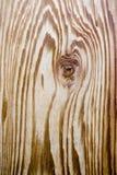 Grano de madera del cedro Fotos de archivo libres de regalías