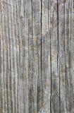 Grano de madera III Fotografía de archivo
