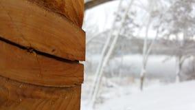 Grano de madera partido Fotografía de archivo libre de regalías