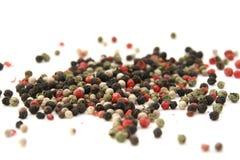 Grano de pimienta Foto de archivo libre de regalías