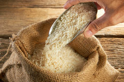 Grano del arroz Imagenes de archivo