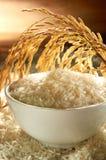 Grano del arroz Fotografía de archivo libre de regalías