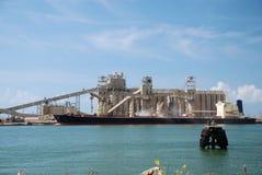 Grano del cargamento del carguero Fotografía de archivo libre de regalías