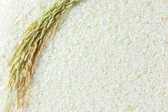 Grano del riso Immagini Stock