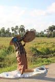 Grano del riso di pulizia Fotografie Stock Libere da Diritti