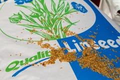 Grano del seme di lino su un sacco Immagine Stock