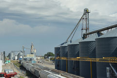 Grano della ferrovia Fotografia Stock