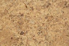 Grano di pietra della parete immagini stock
