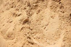 Grano di sabbia della spiaggia Fotografie Stock Libere da Diritti