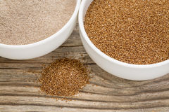 Grano e farina di tef Fotografie Stock