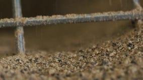 Grano grueso de Brown que se estrella y que pone a tierra en máquina de la amoladora del grano del metal en la cámara lenta almacen de video