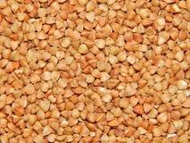 Grano saraceno del fondo, grano saraceno, grano del grano saraceno Immagine Stock Libera da Diritti
