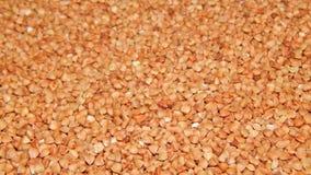 Grano saraceno del fondo, grano saraceno, grano del grano saraceno Fotografie Stock