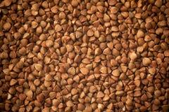 Grano saraceno, fondo dell'alimento Fotografie Stock