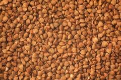 Grano saraceno, fondo dell'alimento Immagini Stock