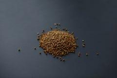 Grano saraceno su fondo scuro Fotografia Stock