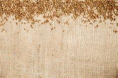 Grano saraceno sul panno di sacco Immagini Stock
