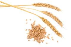 Grano y oídos del trigo aislados en el fondo blanco Visión superior Fotografía de archivo
