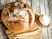 GRANODUR SEMOLA piłki III WŁOSKI chleb W DREWNIANYCH piekarnikach Zdjęcie Royalty Free