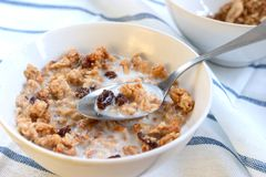 granola κύπελλων Στοκ εικόνα με δικαίωμα ελεύθερης χρήσης