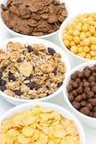 Granola με τους σπόρους και τα διάφορα δημητριακά προγευμάτων Στοκ φωτογραφία με δικαίωμα ελεύθερης χρήσης