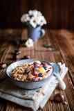 Granola με το γιαούρτι, τα σταφύλια, τα βακκίνια, τα τσιπ καρύδων και τον πουρέ κάστανων στοκ εικόνες με δικαίωμα ελεύθερης χρήσης