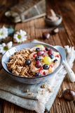 Granola με το γιαούρτι, τα σταφύλια, τα βακκίνια, τα τσιπ καρύδων και τον πουρέ κάστανων στοκ εικόνα με δικαίωμα ελεύθερης χρήσης