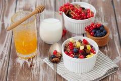 Granola и свежие ягоды Стоковое Изображение RF